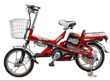 Mua xe đạp điện giant m133 cũ