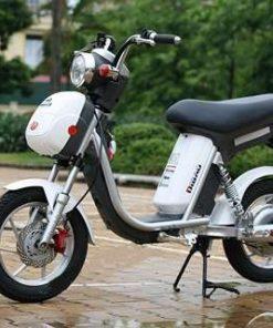 Thu mua xe đạp điện Nijia cũ của hàng Dibao giá cao